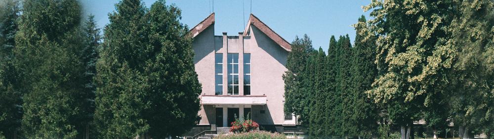 Кмитівський музей відкрив дослідницьку програму, присвячену радянському мистецтву