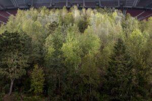 В Австрії художник перетворив футбольний стадіон у ліс