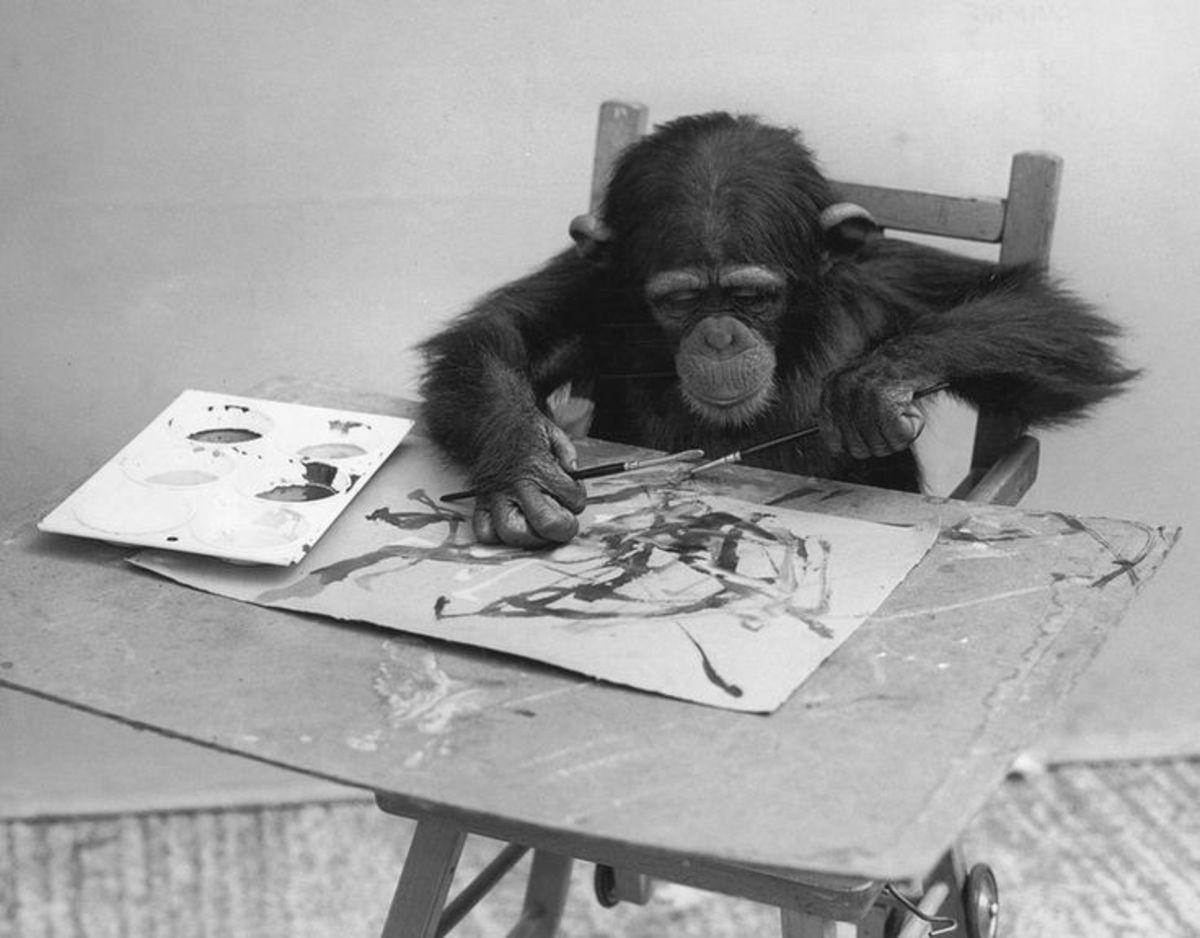 У лондонській галереї пройде виставка шимпанзе