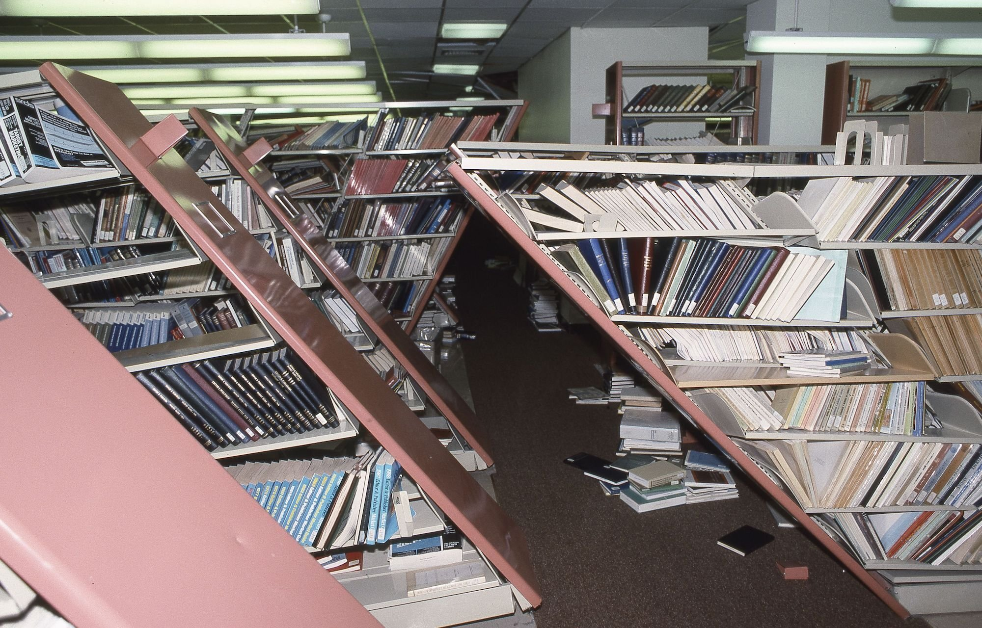 Ніжна матерія бібліотек