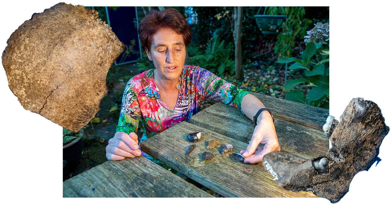 Медсестра з Нідерландів зібрала колекцію тисячолітніх артефактів