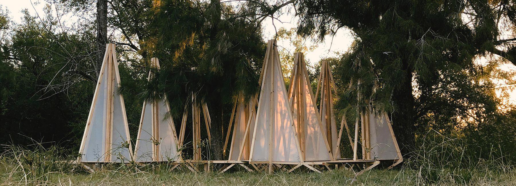 В Аргентині створили проєкт, присвячений екосистемі лісу