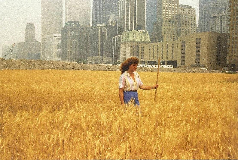 6 робіт ленд-арту: від пшеничного поля в центрі Нью-Йорку до штучних спіральних дамб