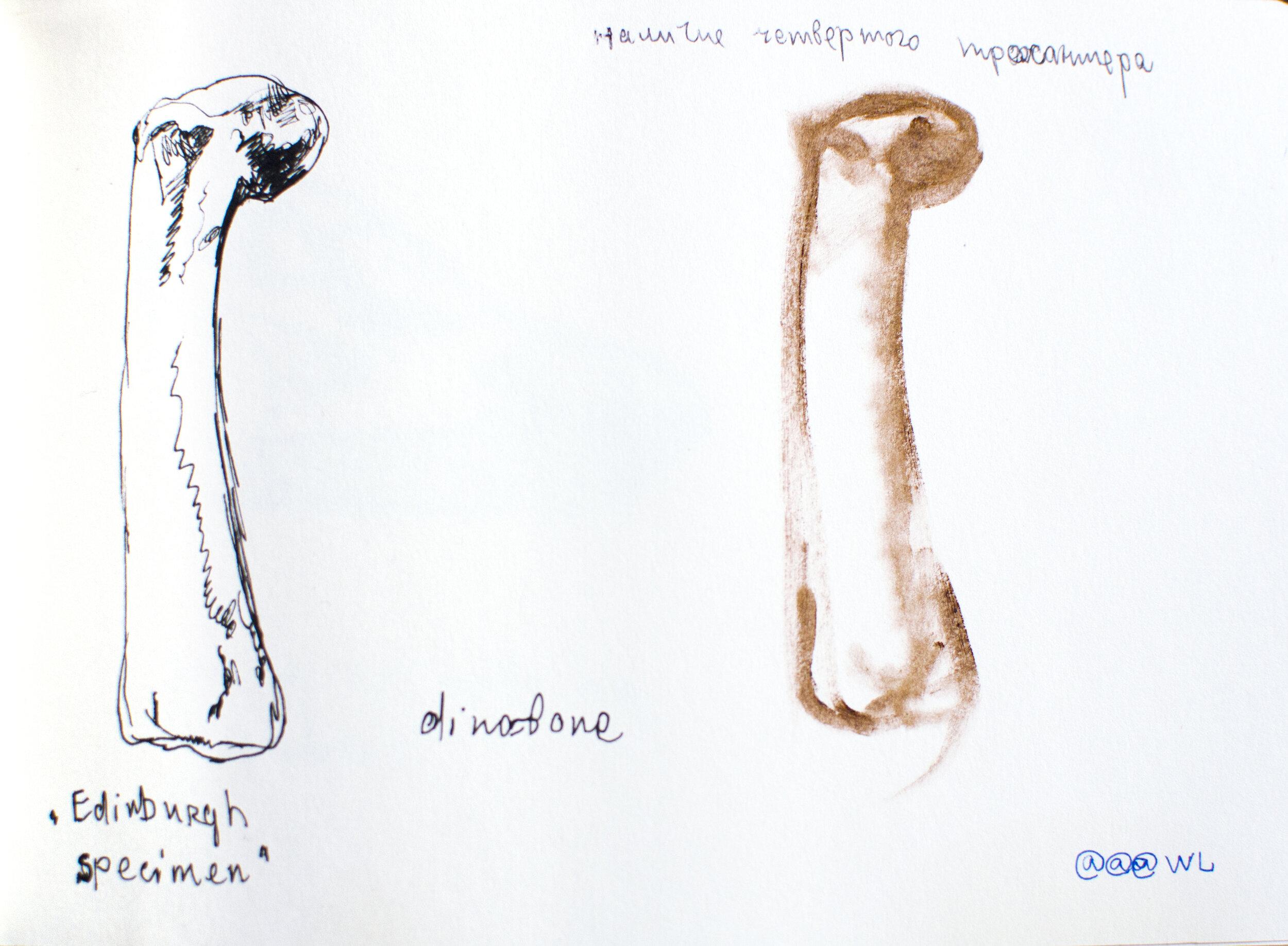 Ренесанс динозаврів Каті Бучацької