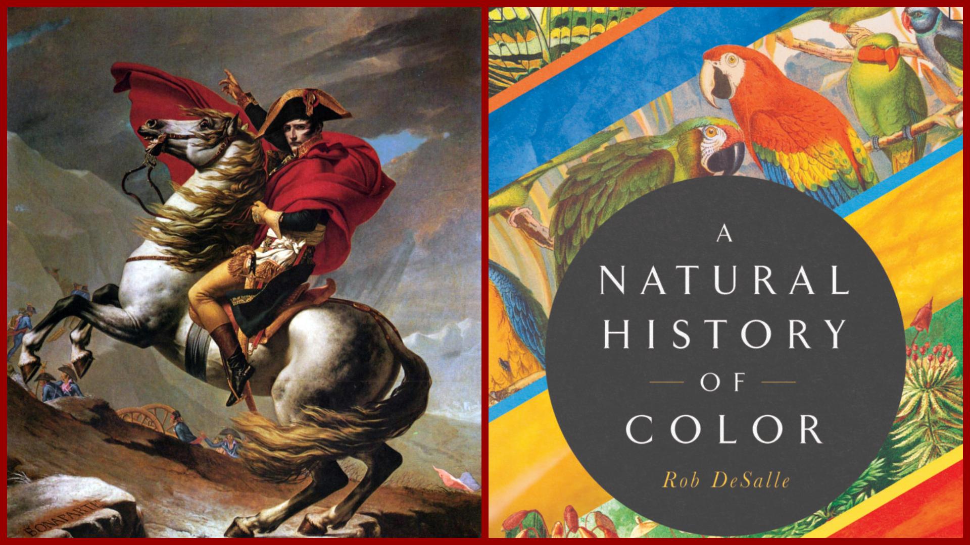 Мистецтвознавець випустив книгу про значення кольорів