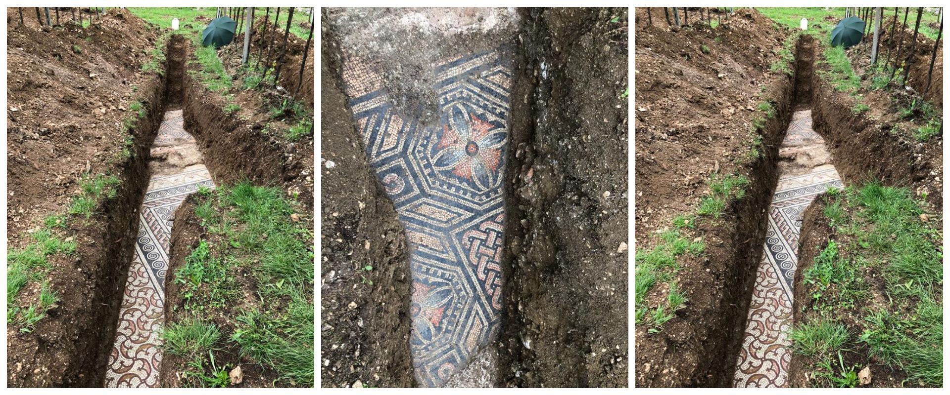 В Італії під виноградником знайшли залишки старовинної вілли