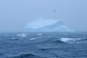 Учені з'ясували, де на Землі найчистіше повітря