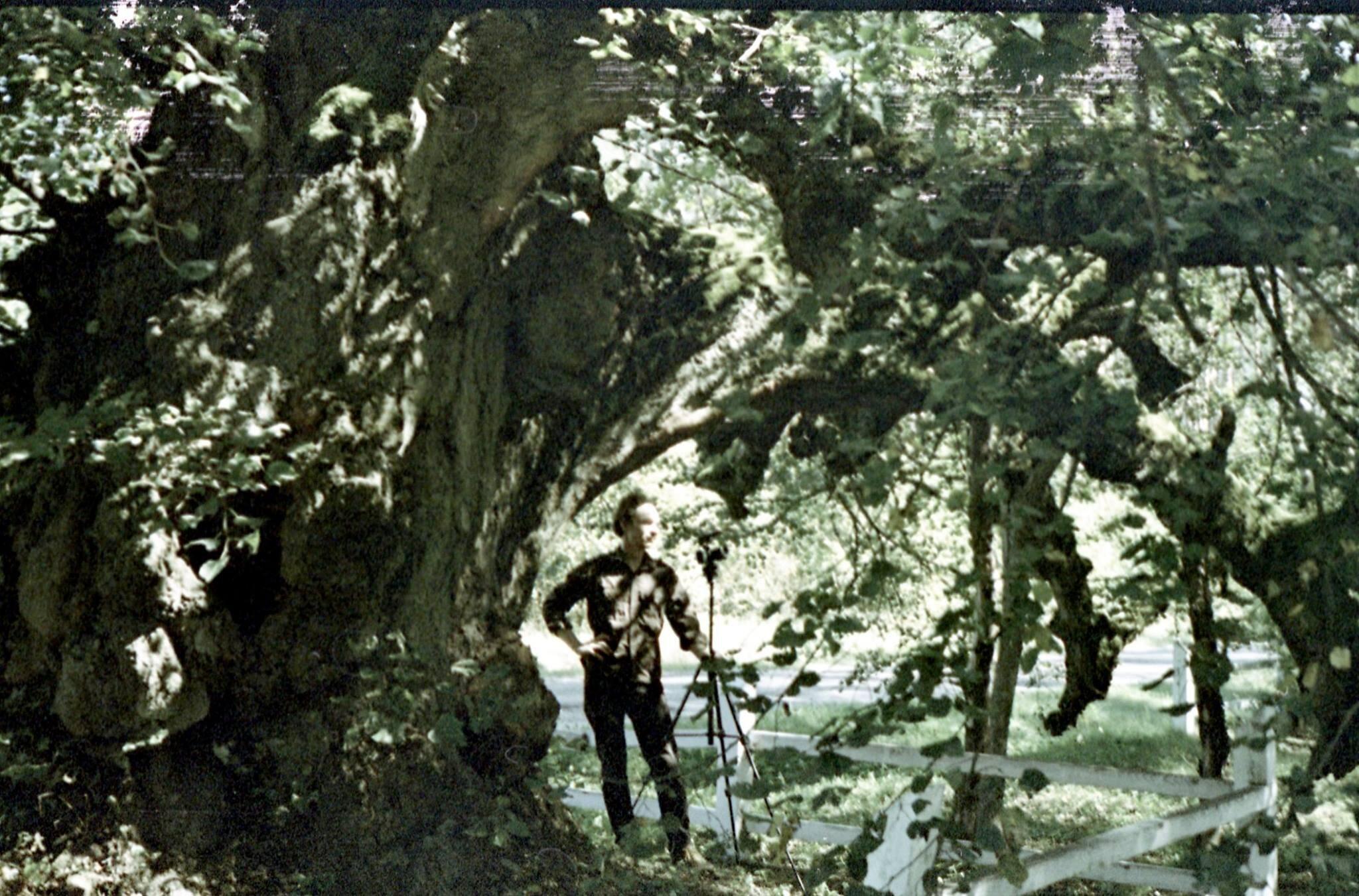 Еліас Парвулеско про художнє становлення, вплив експериментального кіно та капіталізм