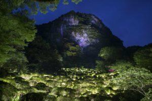 У парку Японії влаштували світлове шоу