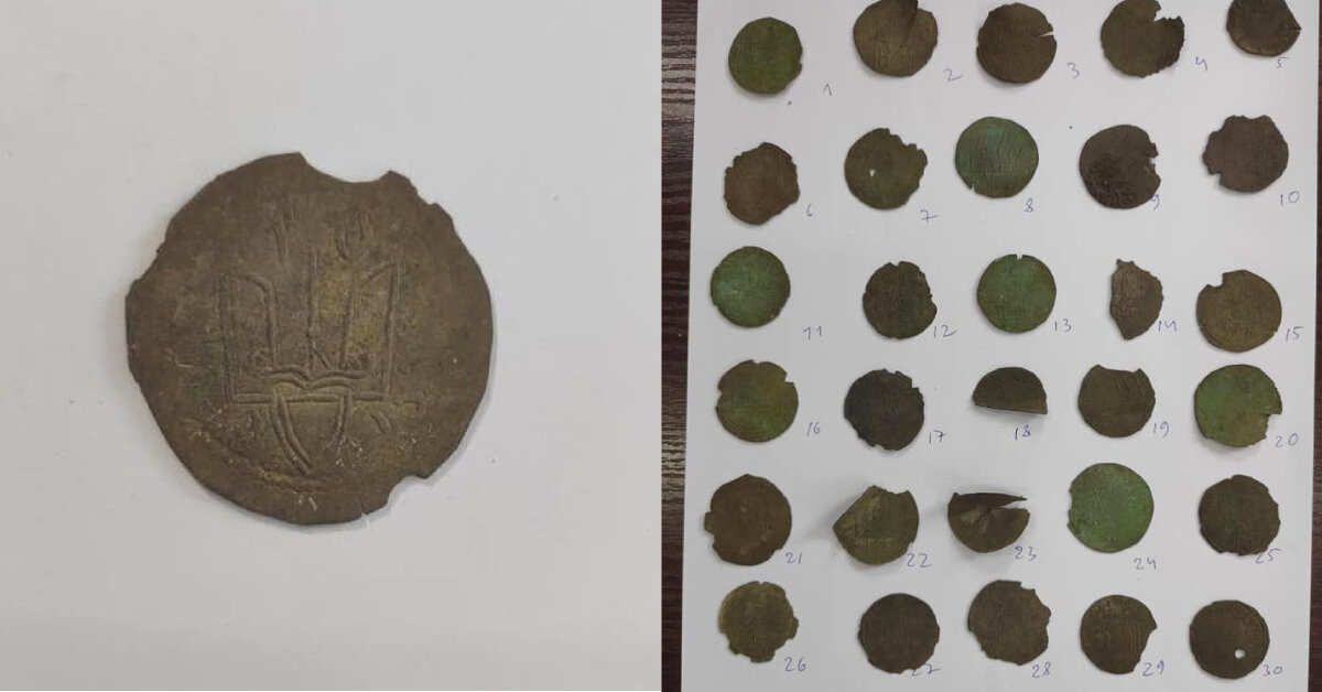На Житомирщині знайшли монети Київської Русі