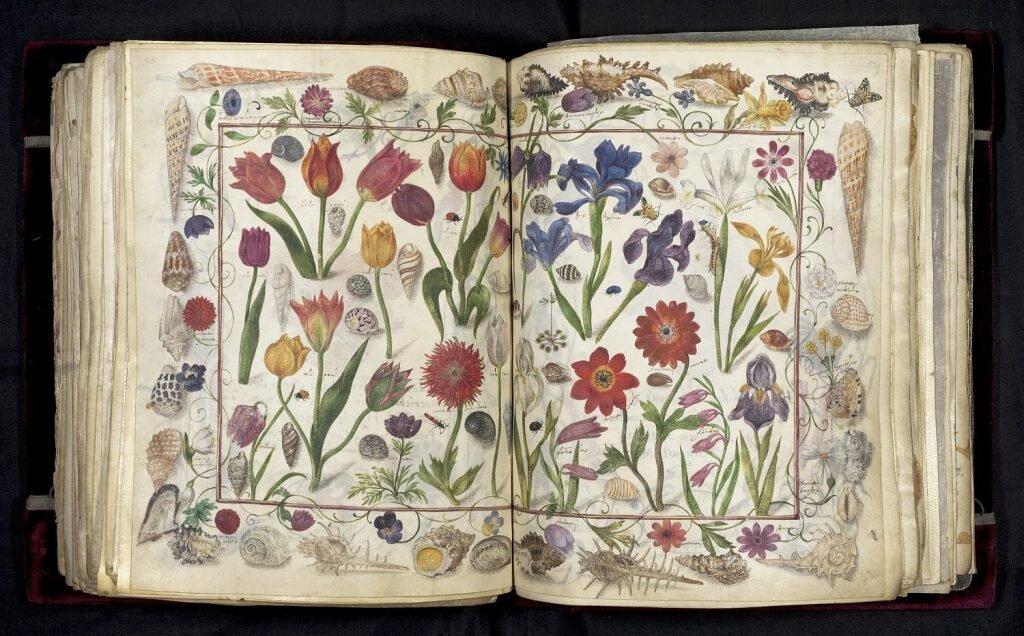 Книжку з підписом Козімо де Медичі та імператора Римської імперії продали за 3,1 мільйона доларів