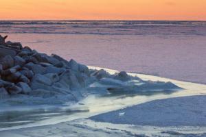 Лід на Беринговому морі взимку зникне