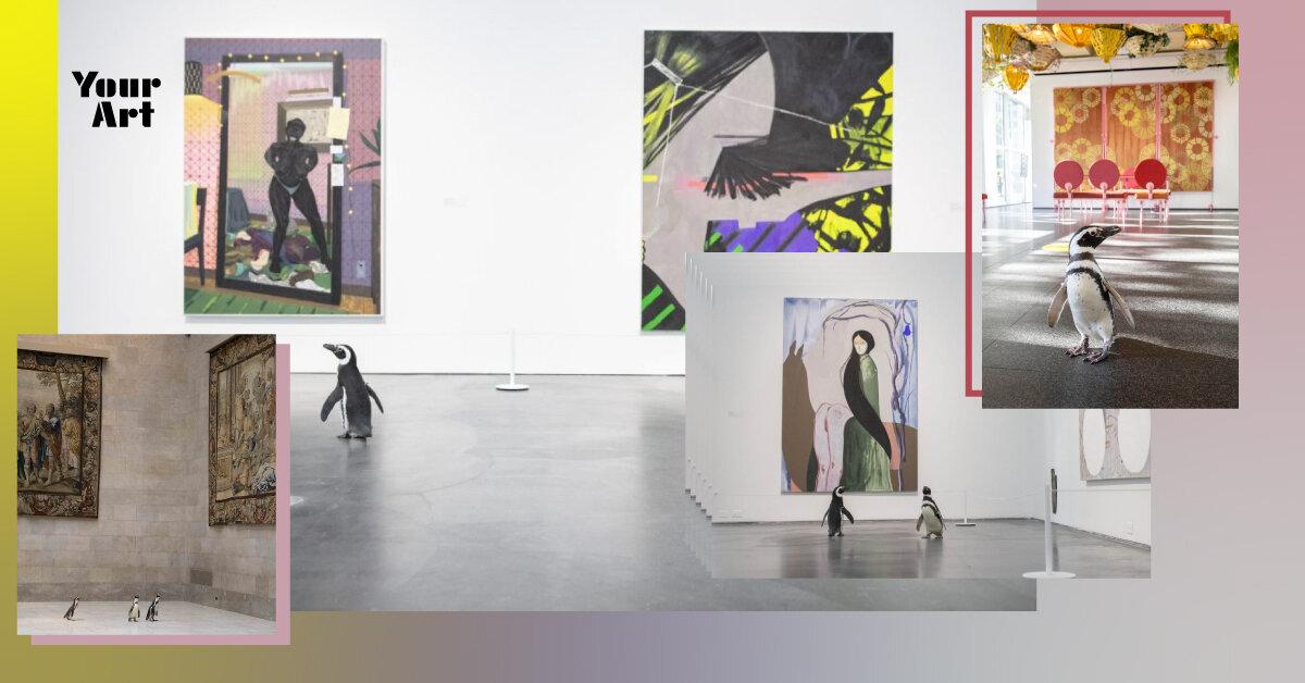 Пінгвіни відвідали Музей сучасного мистецтва Чикаго