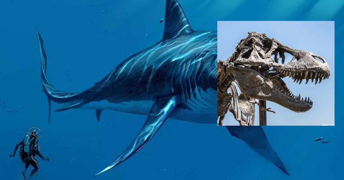Студент виправив помилку, яку палеонтологи зробили 100 років тому