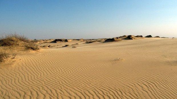 Олешківськи піски. Фото з сайту legend24.ua