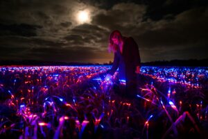 У Нідерландах художник перетворив поле цибулі на артінсталяцію