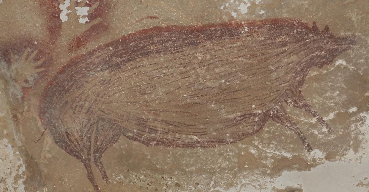 В Індонезії знайшли один із найдавніших малюнків тварини