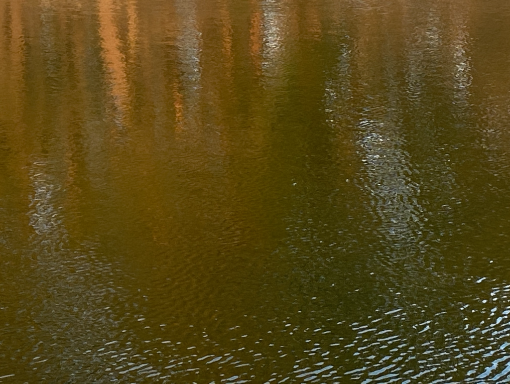 Знімок екрана 2021-01-12 о 14.48.36