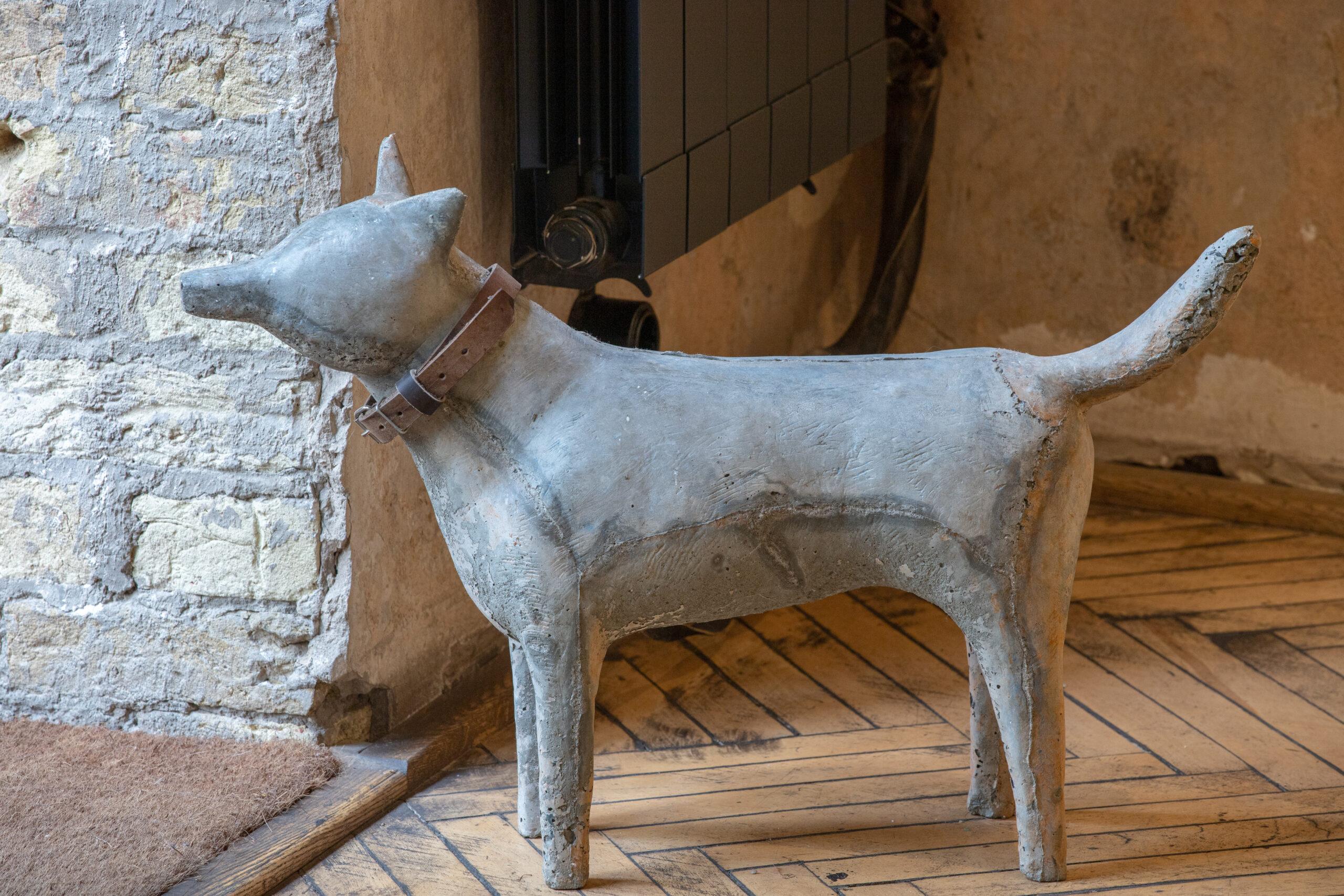 Пес із виставки «МÁРÁ», 2017. Фото Євгена Нікіфорова