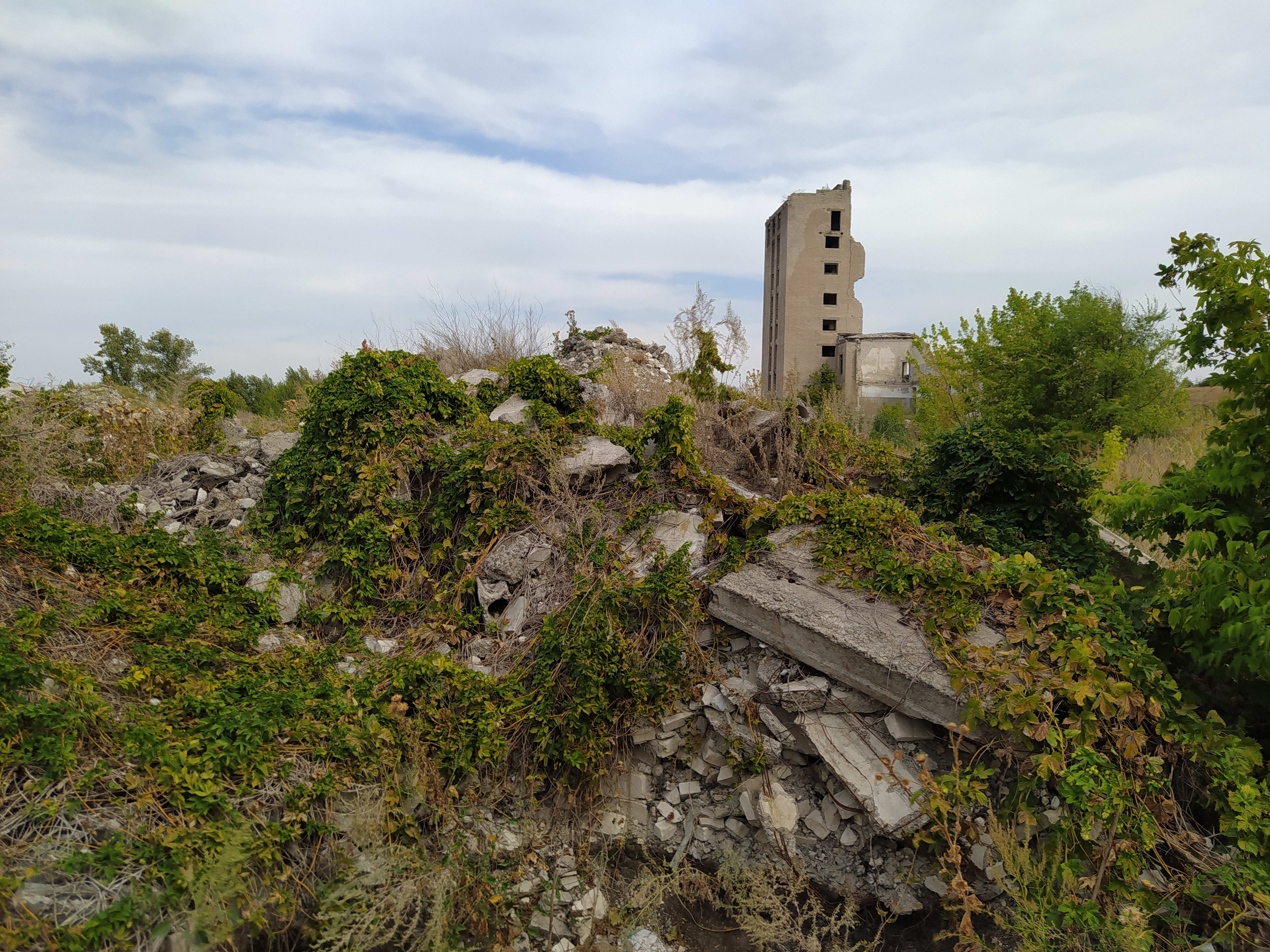 Руїни Донсоди в Лисичанську, фото Олександра Кучинського