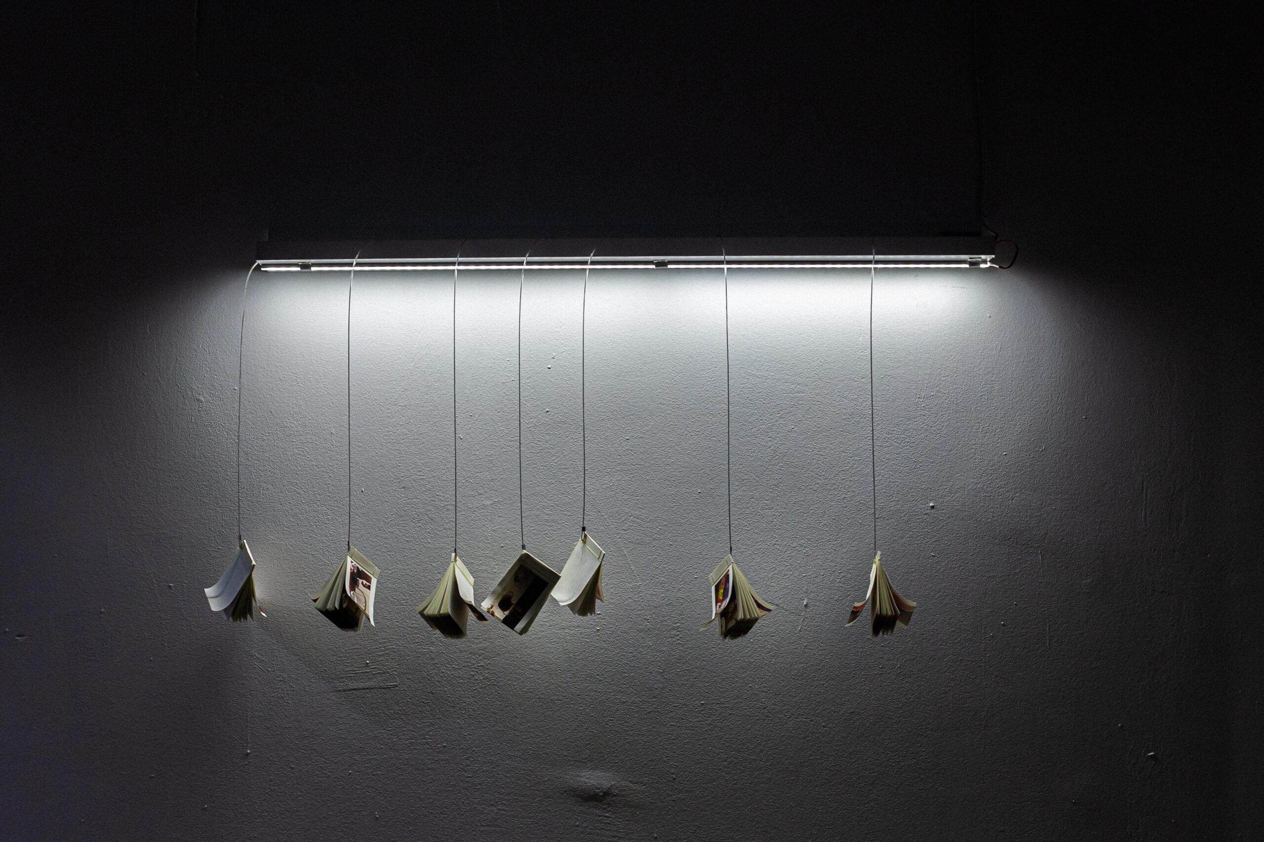 Катя Лесів, проєкт «В саду Тараса», 2019, Бієнале молодого мистецтва, Харків