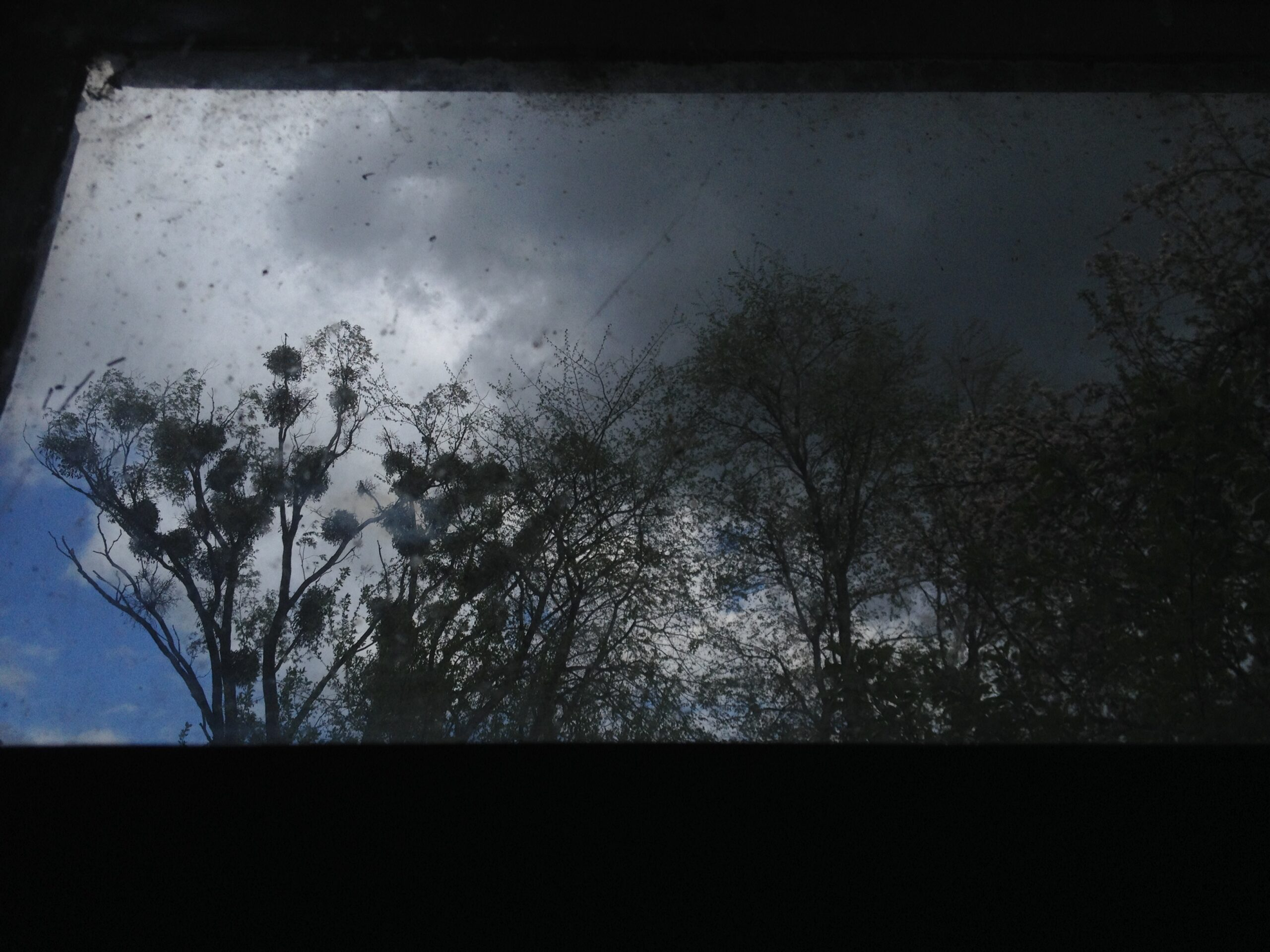 Влада Ралко, види з вікна, 2014