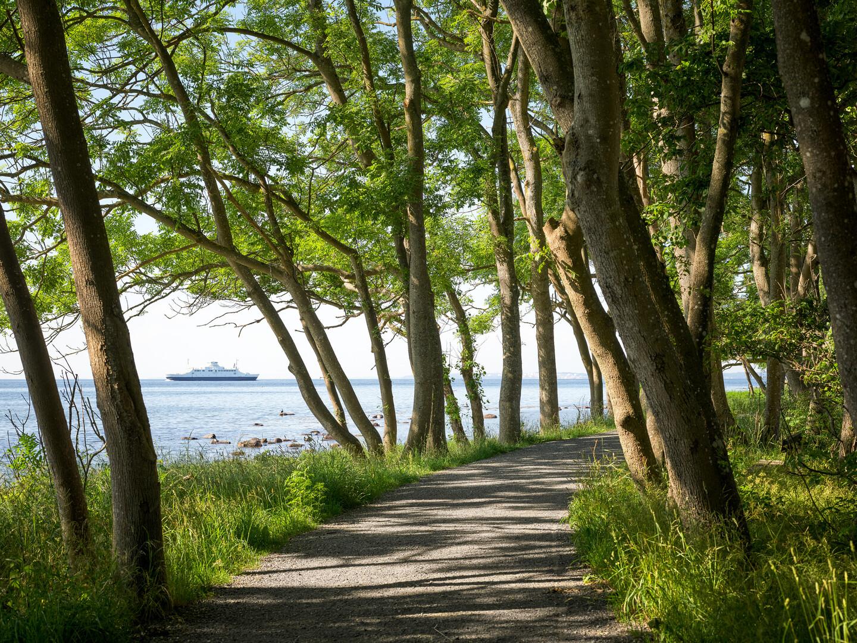 View of Jeløya, Moss, Norway. Фото: Eivind Lauritzen