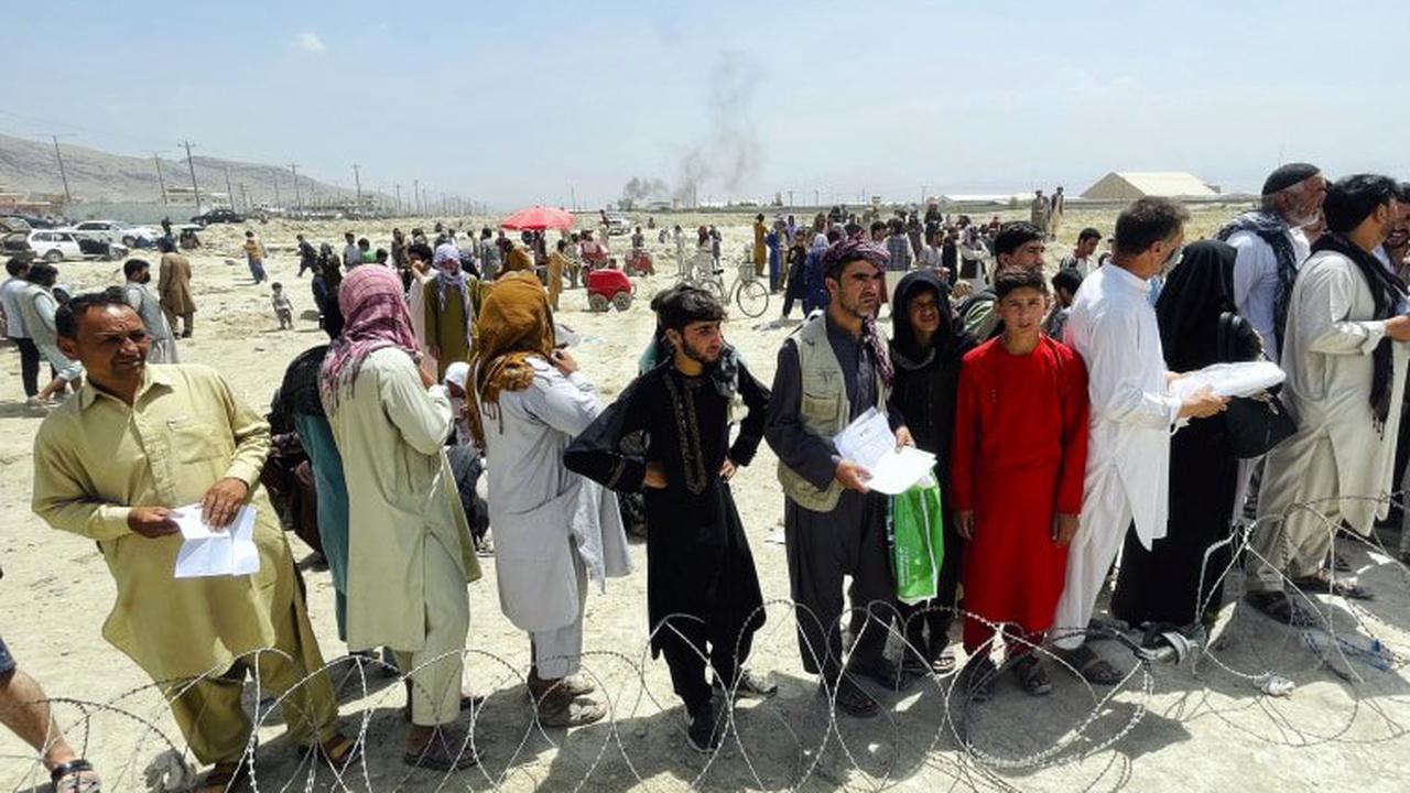 Автор сторінки з мемами зібрав понад 4 мільйони доларів на евакуацію афганців