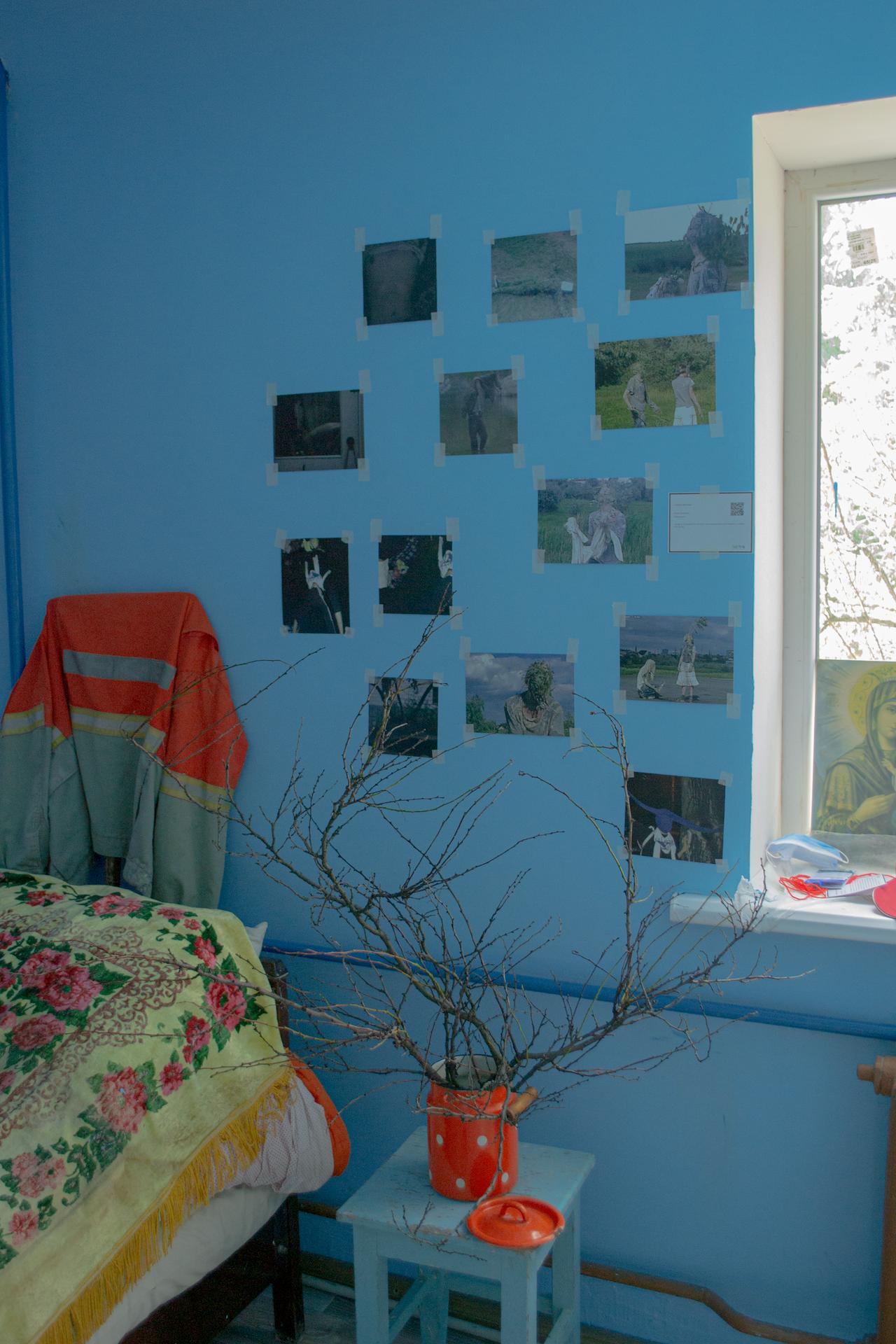 Гарелея на дому —  Лисичанськ