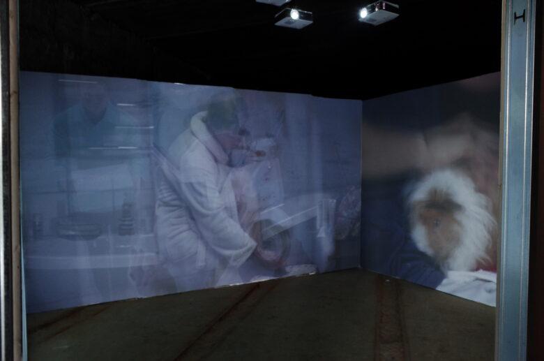 Alexey Sai. Advertising Pause. Video, installation, 2021. Олексій Сай. Рекламна Пауза. Відео, інсталяція, 2021