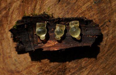 На Полтавщині археологи знайшли скляні підвіски, яким понад 2,5 тисячі років